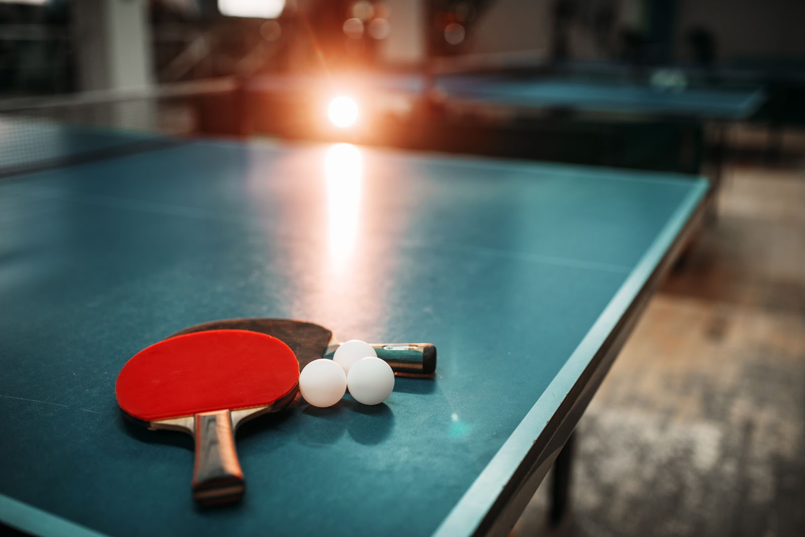 Everything You Need To Know About Table Tennis Machines (Newgy Robo-Pong)
